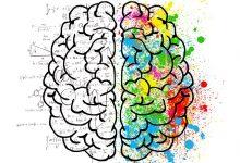 Bild von Was ist Gehirndoping? Die Schaltstelle des Körpers